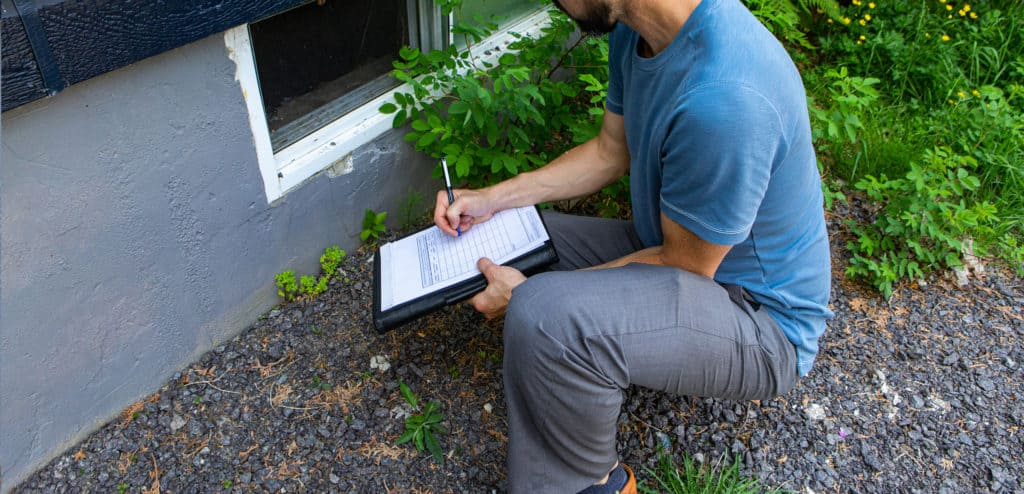 Termite Clearance Letter